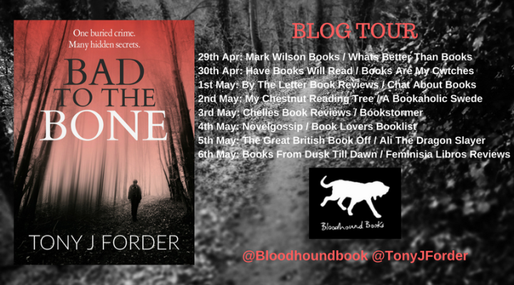 Bad To The Bone Blog tour banner