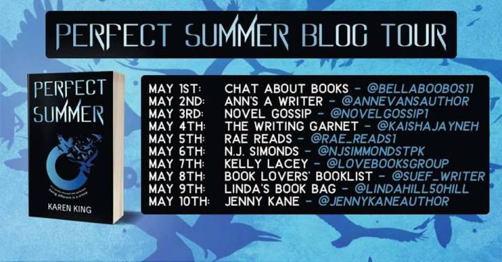 Perfect Summer blog tour banner