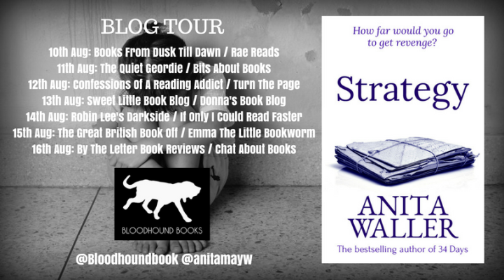 Strategy blog tour banner (2)