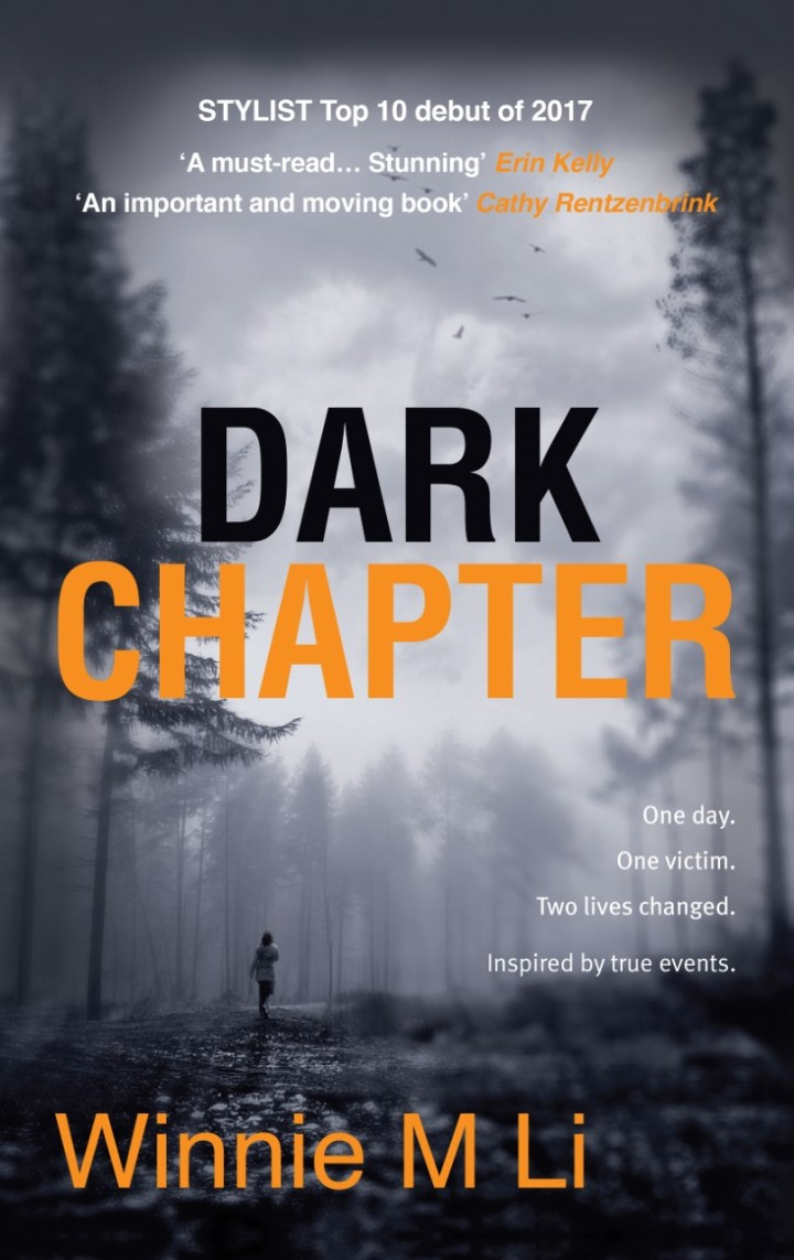 Dark Chapter cover