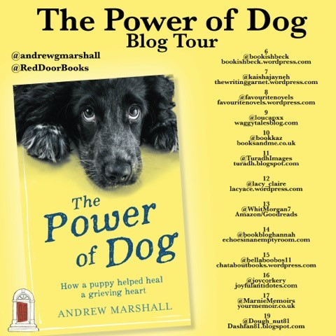 The Power Of Dog blog tout