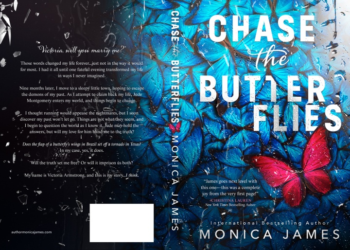 Chase The Butterflies full cover